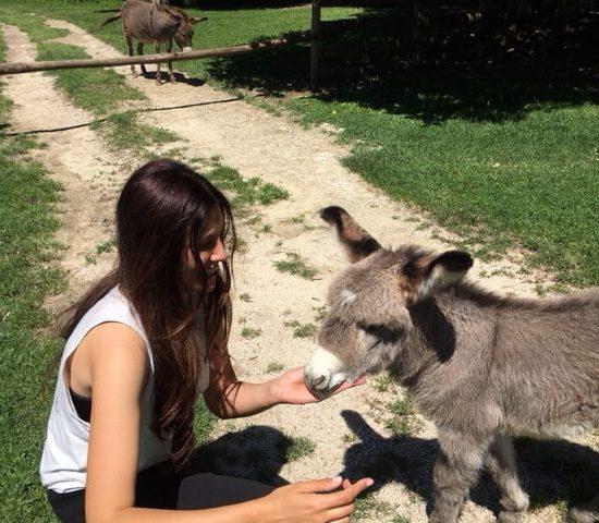 Ponzano Romano: una giornata con tanti animali