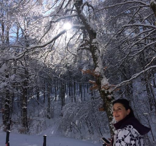 boschi Abruzzo