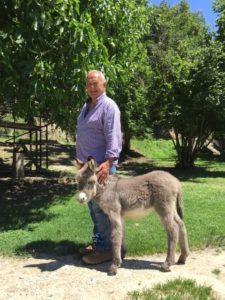 In fattoria a Ponzano Romano
